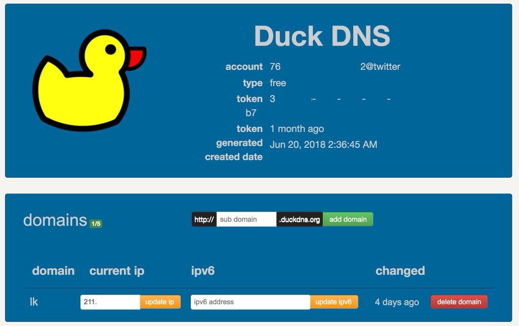 API Token, Subdomain, IP는 가렸습니다.